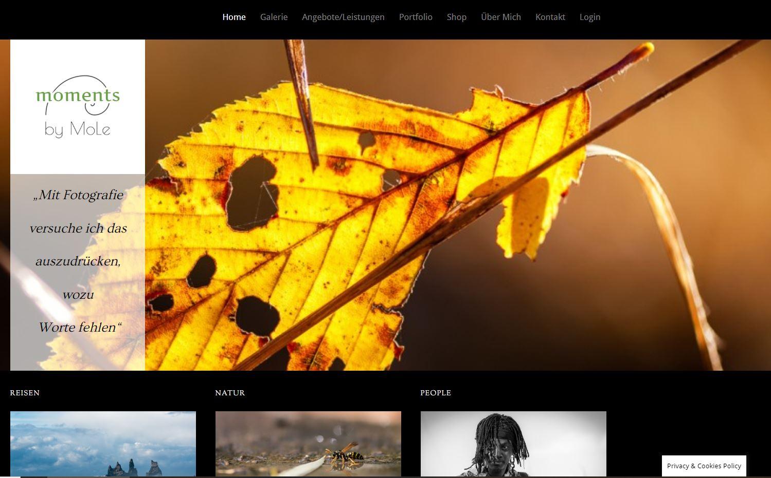 Webdesign mobymo